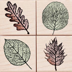 Hero Arts - Woodblock - Wood Mounted Stamps - Small Leaf Impressions - Set of Four