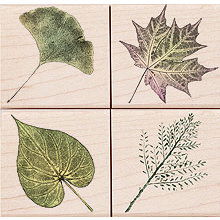 Hero Arts - Woodblock - Wood Mounted Stamps - Real Leaves - Set of Four