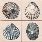 Hero Arts - Woodblock - Wood Mounted Stamps - Little Shells - Set of Four