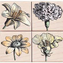 Hero Arts - Woodblock - Wood Mounted Stamps - Blossom Etchings - Set of Four