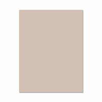 Hero Arts - Hero Hues - Premium Cardstock - 8.5 x 11 - Pebble - 10 Pack