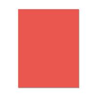 Hero Arts - Hero Hues - Premium Cardstock - 8.5 x 11 - Coral - 10 Pack