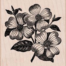 Hero Arts - Woodblock - Wood Mounted Stamps - Dogwood
