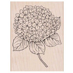 Hero Arts - Garden Collection - Woodblock - Wood Mounted Stamps - Large Hydrangea
