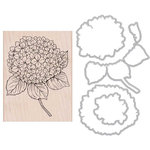 Hero Arts - Garden Collection - Die and Clear Acrylic Stamp Set - Large Hydrangea