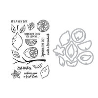 Hero Arts - Die and Clear Photopolymer Stamp Set - Zest Wishes