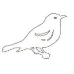 Heidi Swapp - Ghost - Extra Large - XL - Birds, BRAND NEW