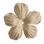 Imaginisce - Bazzill Collection - Bling Blossoms - Small - Blank Check
