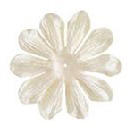 Imaginisce - Bazzill Collection - Flowers - Bling Blossoms - Large - String of Pearls