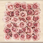 Inkadinkado - Photo Realistic Collection - Wood Mounted Stamps - Bed of Roses