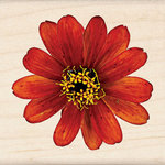 Inkadinkado - Photo Realistic Collection - Wood Mounted Stamps - Zinnia