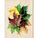 Inkadinkado - Photo Realistic Collection - Wood Mounted Stamps - Leaves