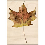 Inkadinkado - Photo Realistic Collection - Wood Mounted Stamps - Maple Leaf