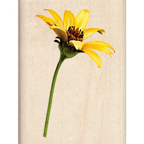 Inkadinkado - Photo Realistic Collection - Wood Mounted Stamps - Sunflower