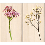Inkadinkado - Photo Realistic Collection - Wood Mounted Stamps - Wild Flowers