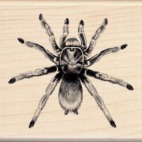 Inkadinkado - Sketches Collection - Halloween - Wood Mounted Stamps - Tarantula
