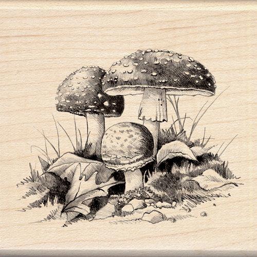 Inkadinkado - Sketches Collection - Halloween - Wood Mounted Stamps - Mushrooms