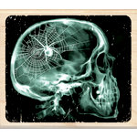 Inkadinkado - Clinical Halloween Collection - Wood Mounted Stamps - X-Ray Skull