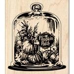 Inkadinkado - Halloween - Wood Mounted Stamps - Glassed Pumpkin Patch