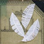 Jenni Bowlin Studio - Feathers - Vellum