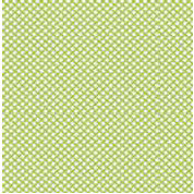Jenni Bowlin Studio - Front Porch Collection - 12 x 12 Paper - Green Crosshatch