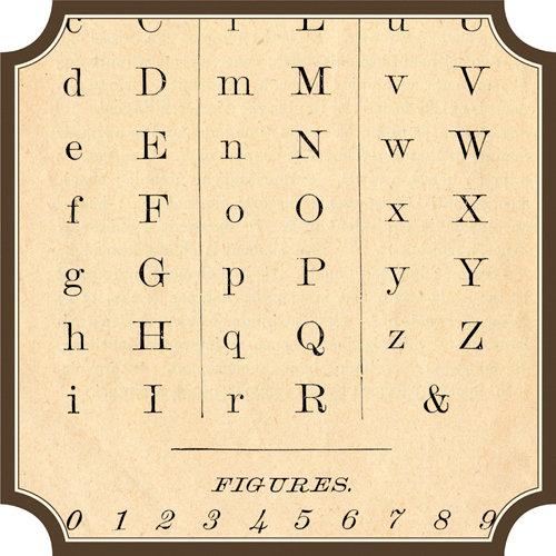 Jenni Bowlin Studio - Family Tree Collection - 12 x 12 Die Cut Paper - Label