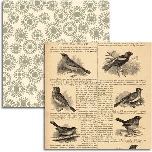 Jenni Bowlin Studio - Wren Collection - 12 x 12 Double Sided Paper - Bird