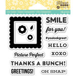 Jillibean Soup - Shaker Clear Acrylic Stamps - Pic Perfect