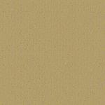 Jillibean Soup - Soup Staples Collection - 12 x 12 Kraft Paper - Green Stock