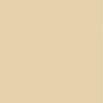 Kaisercraft - 12 x 12 Weave Cardstock - Oatmeal
