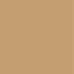 Kaisercraft - 12 x 12 Weave Cardstock - Biscuit