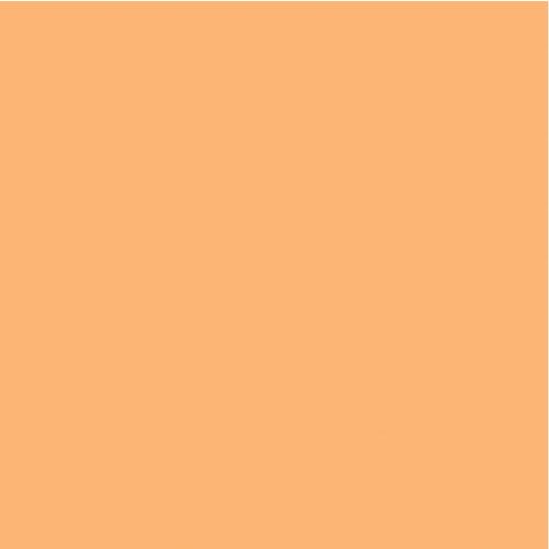 Kaisercraft - 12 x 12 Weave Cardstock - Apricot