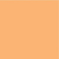 Kaisercraft - 12 x 12 Weave Cardstock - Apricot