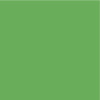 Kaisercraft - 12 x 12 Weave Cardstock - Frog