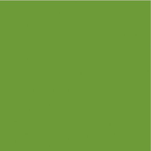 Kaisercraft - 12 x 12 Weave Cardstock - Lime