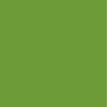 Kaisercraft - 12 x 12 Weave Cardstock - Lime