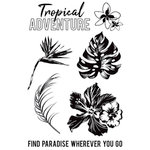 Kaisercraft - Paradise Found Collection - Clear Acrylic Stamps