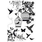 Kaisercraft - Hummingbird Collection - Clear Acrylic Stamp
