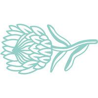 Kaisercraft - Decorative Die - Protea