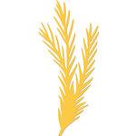 Kaisercraft - Christmas - Decorative Dies - Pine Sprig