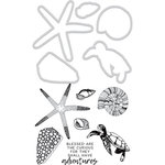 Kaisercraft - Decorative Dies and Clear Acrylic Stamps - Sea Shells