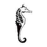 Kaisercraft - 4 x 6 Embossing Folder - Sea Horse