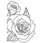 Kaisercraft - 4 x 6 Embossing Folder - Sketched Rose