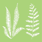 Kaisercraft - 6 x 6 Stencils Template - Ferns