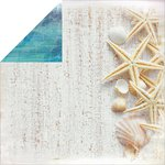 Kaisercraft - Sandy Toes Collection - 12 x 12 Double Sided Paper - Sea Shells