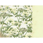Kaisercraft - Botanica Collection - 12 x 12 Double Sided Paper - Air
