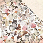 Kaisercraft - Mademoiselle Collection - 12 x 12 Double Sided Paper - Flutter