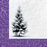 Kaisercraft - Christmas Jewel Collection - 12 x 12 Double Sided Paper with Foil Accents - Silver Swirl