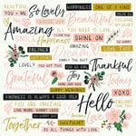 Kaisercraft - Fleur Collection - 12 x 12 Double Sided Paper - Dreamer