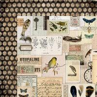 Kaisercraft - Anthology Collection - 12 x 12 Double Sided Paper - Ephemera